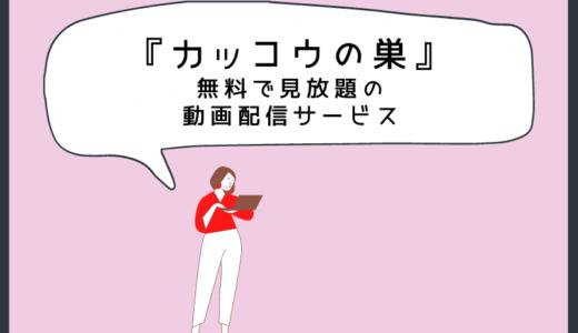 カッコウの巣(韓国ドラマ)日本語字幕付き無料で見放題できる動画配信サービス
